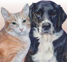 janet zeh original art watercolor and oil paintings dog and cat pet portraits watercolor or oil paintings