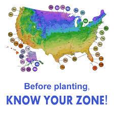 usda plant hardiness zone map wilson