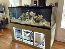 petco fish tanks with stands. Unique Petco I Was A Manager For Petco Many Years And On More Than One Occasion Had  Customer Coem In Whose  Throughout Fish Tanks With Stands W