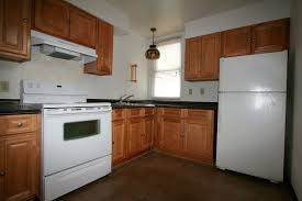 Old Kitchen Remodeling Prepossessing Old Kitchen Cabinets About Remodel Painting Old
