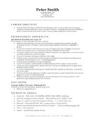 Science Resume Examples Beauteous Programmer Resume Example Programming Resume Examples Programmer