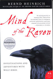 book review mind of the raven ramekin cottage confession i ve been fascinated by ravens since i first heard barry lopez his essay ldquothe ravenrdquo from his book desert notes