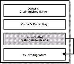 Format Of Digital Certificates