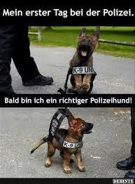 Mein Erster Tag Bei Der Polizei Lustige Bilder Sprüche Witze
