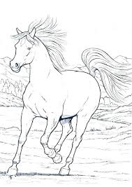 spirit horse coloring pages printable free coloring pages horse coloring pages printable plus wild horse in