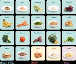 Baby Food Stages Chart Early Childhood Nutrition
