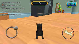 <b>Cat simulation</b> Kitty craft #6 :D - YouTube