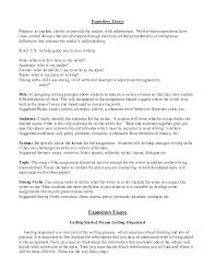 example for essays template example for essays