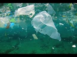 ocean by size new garbage patch in ocean is 1 5 times the size of texas youtube