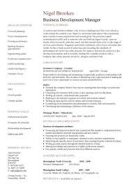 Professional Profile Resume Adorable Business Development Manager CV Template Managers Resume Marketing