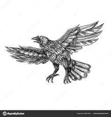 ворон полет вверх геометрической мандалы татуировки стоковое фото