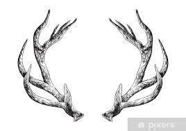 deer antlers wall mural pixers we
