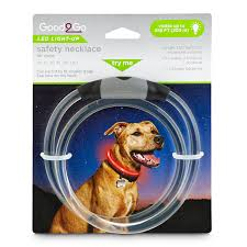 Blinking Lights For Dogs Good2go Led Light Up Safety Necklace For Dogs One Size Fits