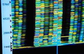 quest article the pros cons of genetic testing a quest  the pros cons of genetic testing