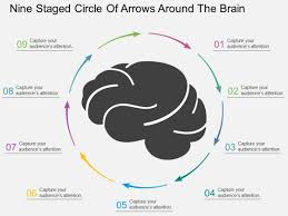 Nine Staged Circle Of Arrows Around The Brain Powerpoint Template ...