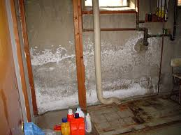 white powder known as efflorescence on basement walls