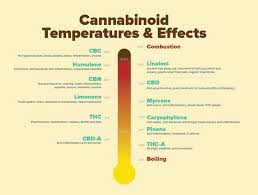 Terpene Temperature Chart Vaping Temperature The Best For Each Cannabinoid Terpene