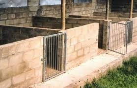 Pig Farming Business Plan Gist Educating Agriculture Technology Business Advice And