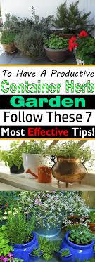 Herb Garden 7 Essential Container Herb Garden Tips Growing Herbs In Pots