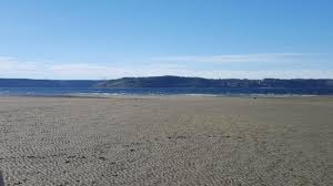 Dash Point Wa Tide Chart Wide Open Beach Amount Varies With Tide Clean And