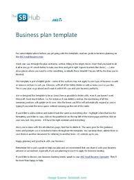 Executive Summary In Resume Gorgeous Example Of Good Executive Summary Colbroco