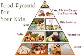 Food Pyramid Project Food Pyramid Project