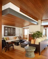 Nice Ceiling Designs Living Room Amazing Living Room Wood Ceiling Design Nice Home