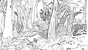 coloring pages of animals in the rainforest plants coloring pages animals in the coloring pages drawn coloring pages of animals in the rainforest