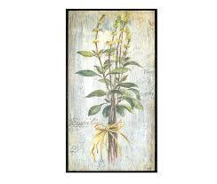 herb basil framed art