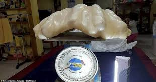 This <b>$100</b> Million <b>Pearl</b> Is the Largest and Most Expensive in the World