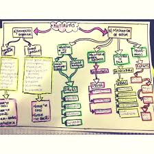 Antibiotic Chart For Nurses Antibiotic Flow Chart For All The Nurses Out There