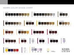Matrix Demi Permanent Hair Color Chart Kenra Color Simply Stunning Results Kenra Professional