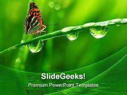 Dew And Butterfly Nature Powerpoint Templates And Powerpoint ...