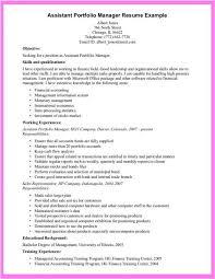 Job Application Portfolio Example Sample Email For Job Application Resume Examples Resume