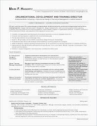 Sales Representative Resume Samples Unique Insurance Agent Resume Template Best Insurance Sales Agent Resume