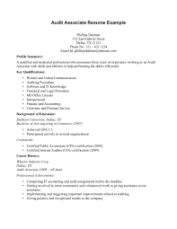 Cute Resume For Auditor Assistant Contemporary Example Resume