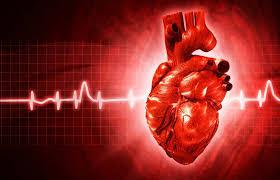 Ожирение и сердечно сосудистые заболевания факторы риска и  Мерцательная