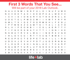 3 words that describe you life in the lab thermo fisher scientific us