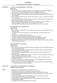 Business Product Manager Resume Samples Velvet Jobs