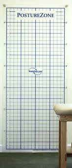 Posture Grid For Posture Assessment Wall Mount