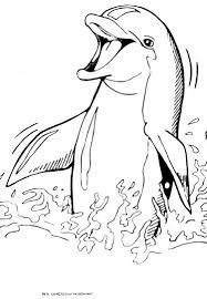 Animaux Coloriage Dauphins Coloriages Pour Enfants Coloriage To