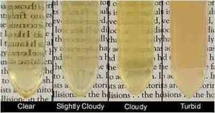 Urine Color And Clarity Chart Urinalysis Physical Examination All Things Kidney Official