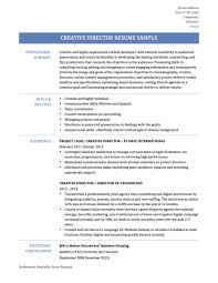 It Director Resume Samples Executive 2017 Indian Manager Sample