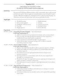 Example Of A Customer Service Resume Stunning Customer Service Representative Resume Sample Customer Service