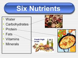 Protein Vitamins Minerals Fats And Carbohydrates Chart Six Nutrients Water Carbohydrates Protein Fats Vitamins
