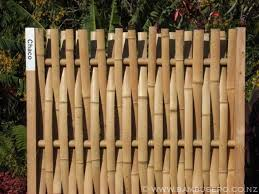 Small Picture bamboo garden fence ideas How To Grow Organized Bamboo Garden