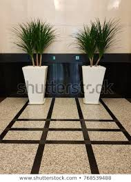 Image Bonsai Decorative Plants In Big Pots At Lift Lobby Inside An Office Building Shutterstock Decorative Plants Big Pots Lift Lobby Stock Photo edit Now