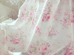 pink peony roses
