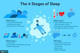 Ideal Sleep Cycle Chart The 4 Stages Of Sleep Nrem And Rem Sleep Cycles