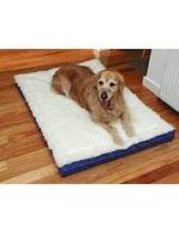 Magnetic Beds Buy Magnetic Pet Beds Online Love My Pet